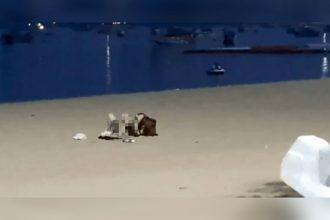 Joven pareja es filmada teniendo sexo intenso en la playa