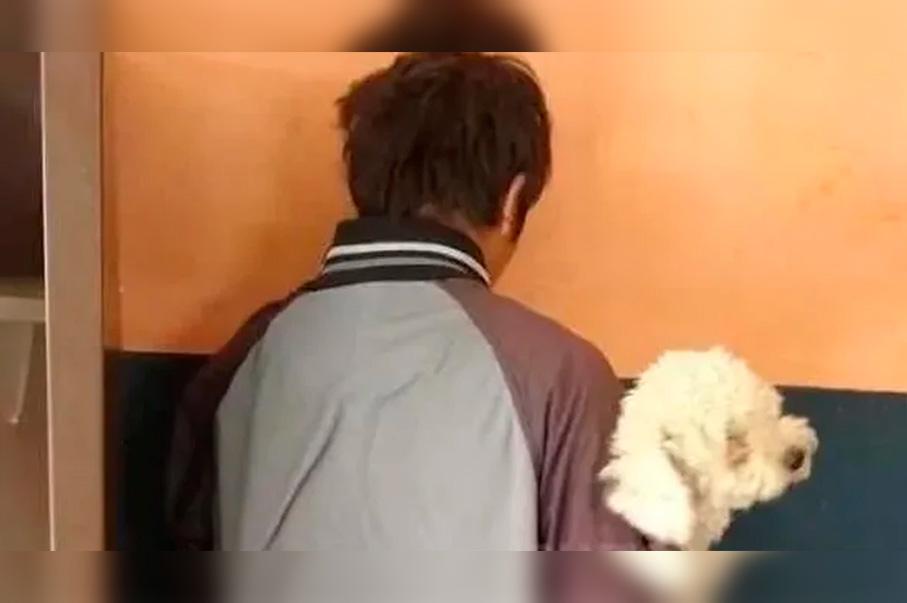Joven argentino roba perro para dárselo de regalo a su novia